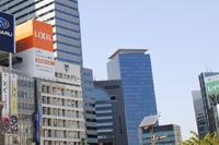 新宿で大人遊びを堪能しよう!